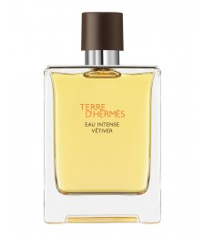 Hermes Terre d'Hermes Eau Intense Vetiver For Men Edp 100ml
